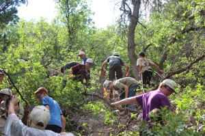 Service Project – the scouts clear brush for zip line and climbing wall.