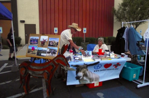 Peaceful Valley Donkey Rescue is one of the community's non-profit organizations who took advantage of the free vendor booth opportunities at Eureka Casinos Rockets over the Red Mesa celebration to let the crowd know about their cause and gather donations for the PVDR. Photo by Teri Nehrenz.