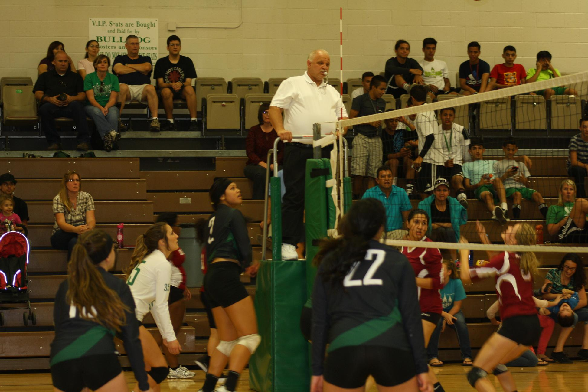 Lady Bulldog volleyball squad shuts down Dragons 3-0