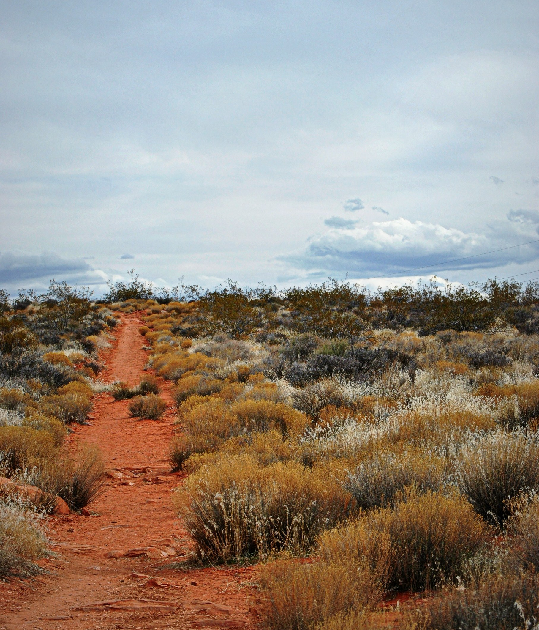 """Gallery Salutes the """"Dusty Trails"""" of Nevada History"""