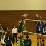 Bulldog volleyball squad shut out by Lions 3-0