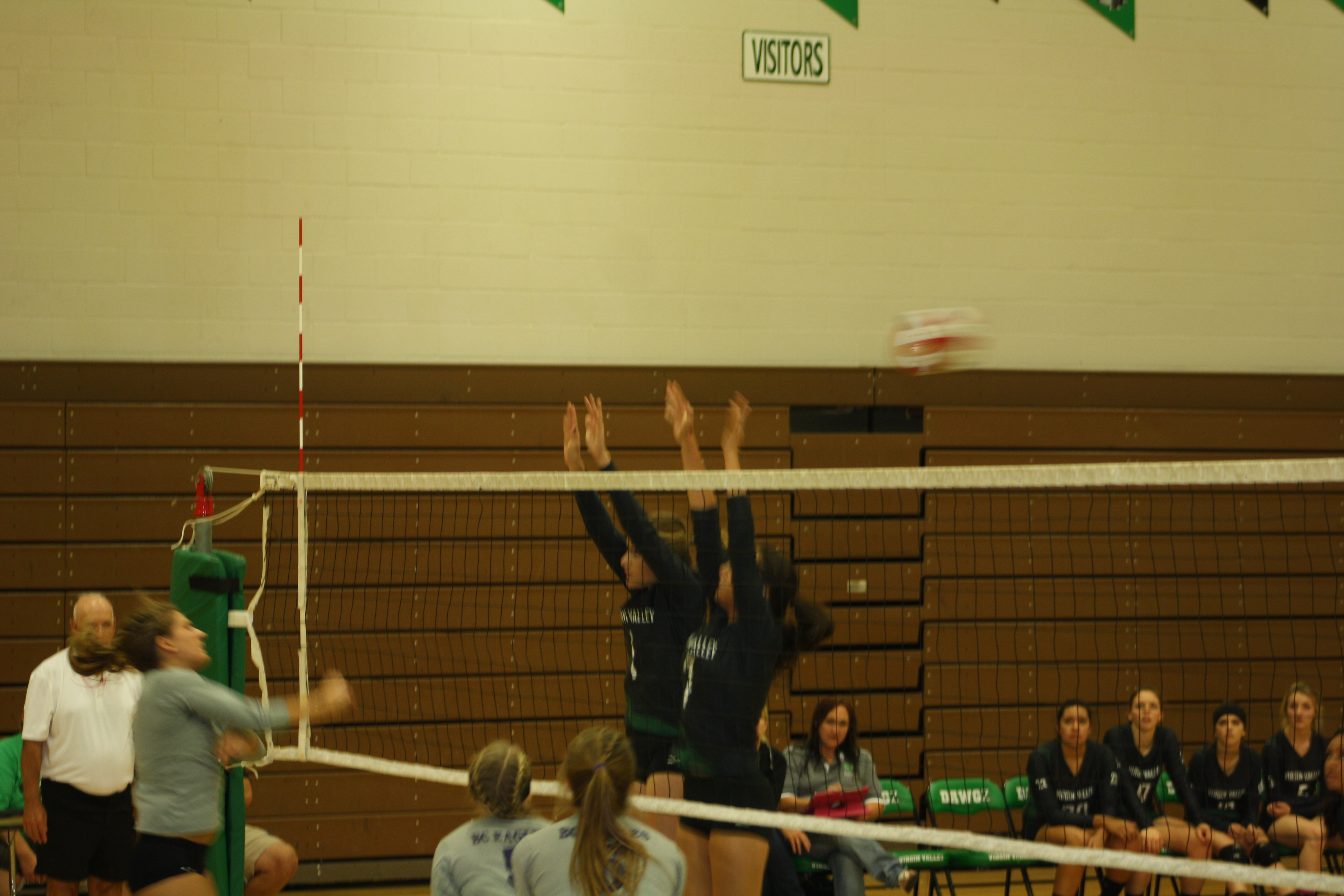 Bulldog volleyball gals shock undefeated Eagles 3-2