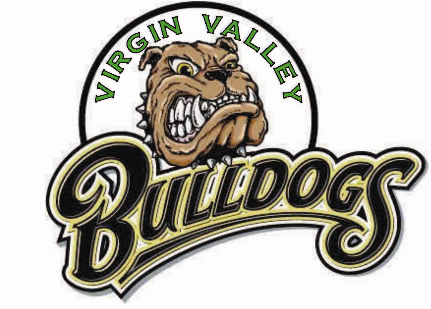 Bulldog volleyball defeats Mojave 3-0 in first round of 3A playoffs