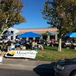 Book Sale raises over $1000 for summer reading