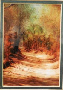 web Red Dirt Road, photo by Michelle Kemick, won Honorable Mention