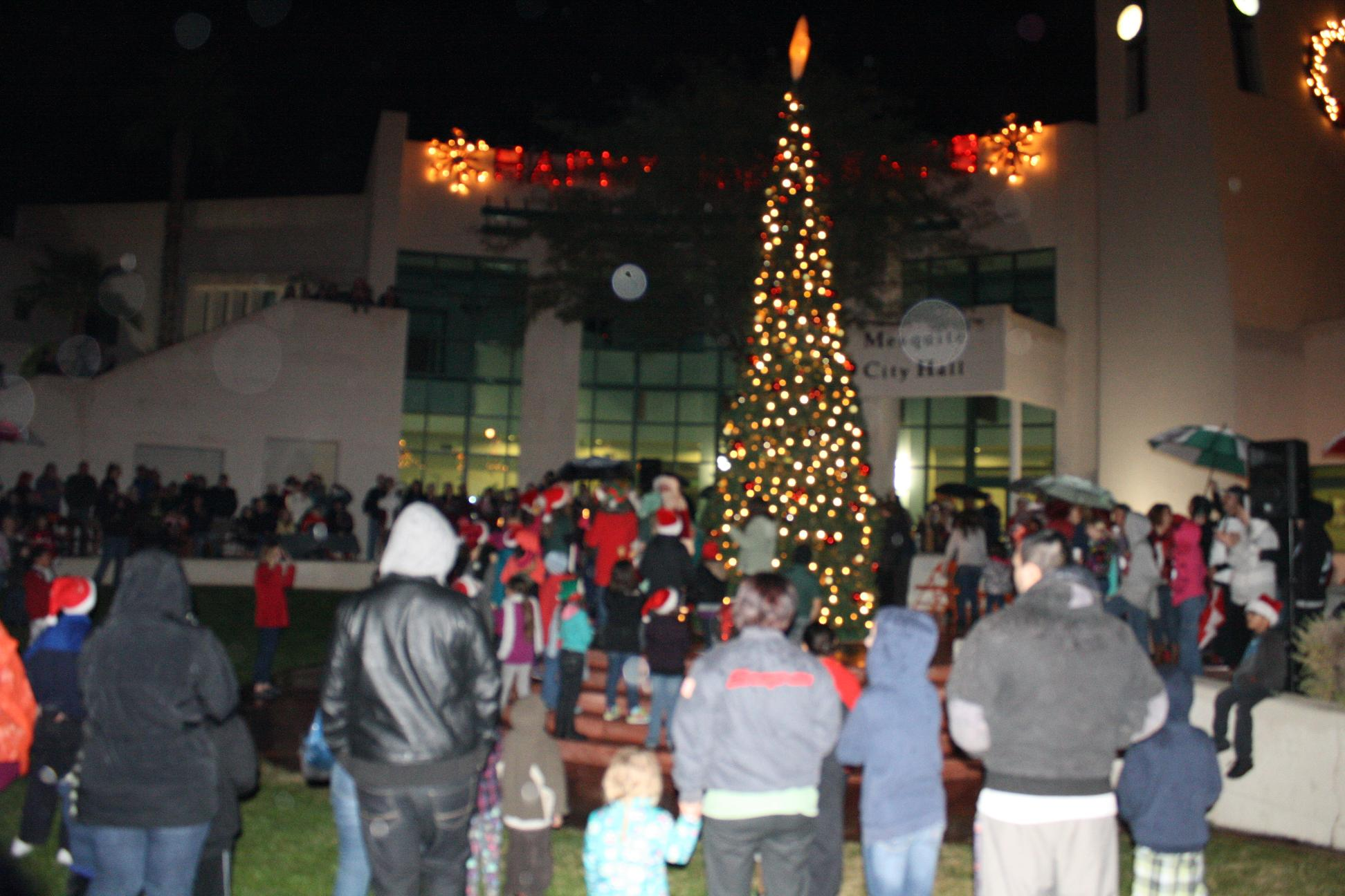 Large crowd enjoys tree lighting ceremony