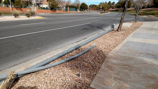 Sunday morning accident takes out light poles and trees
