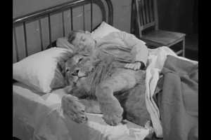2b. MGM publicity photo of Carpenter with young lion
