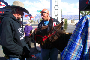 Troy James gets a taste of how gentle the donkeys can be as he feeds Abby a cookie at the 2nd Annual Donkey Jamboree which was held at the Golden West Casino February 28, 2015. Photo by Teri Nehrenz.