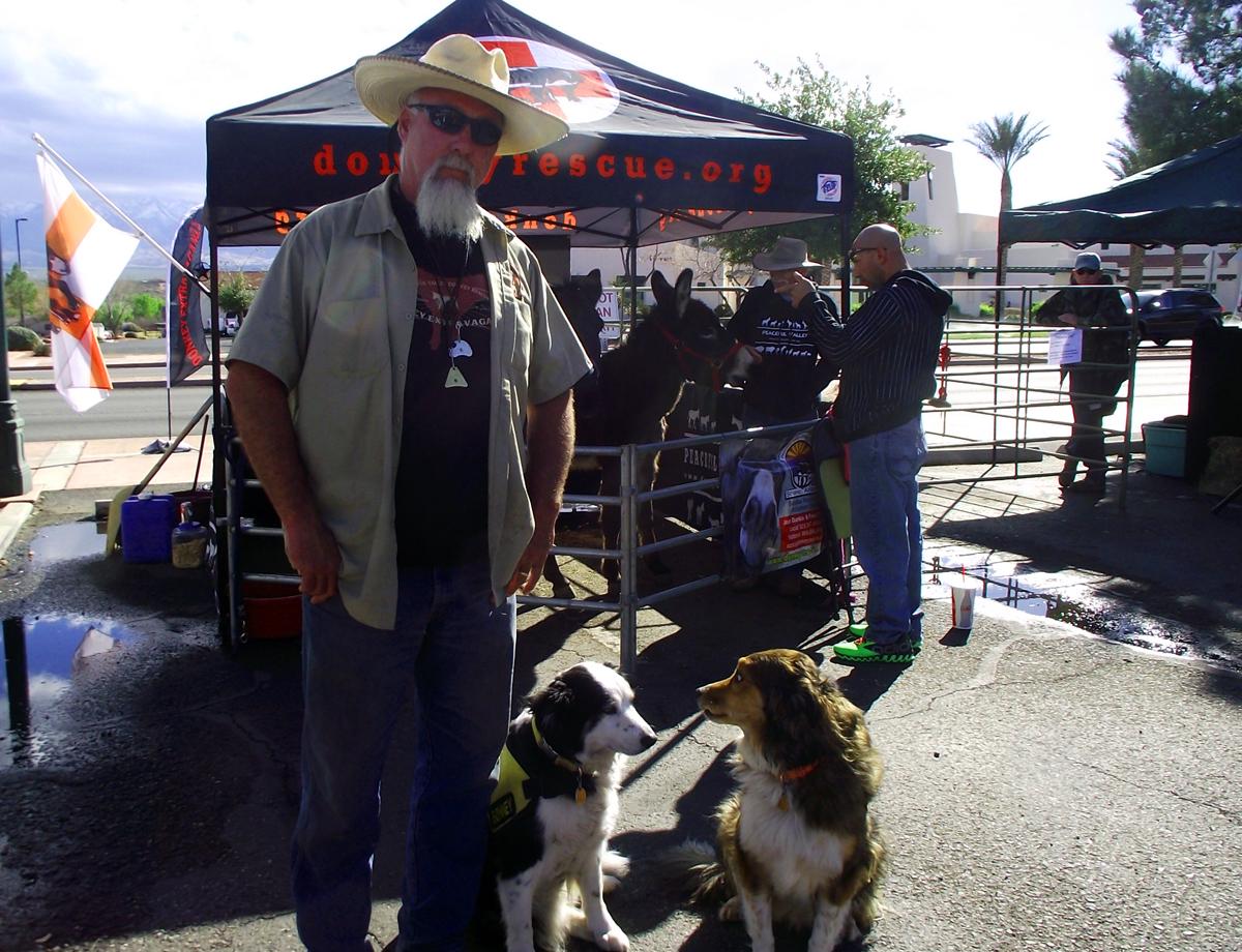 2nd Annual Donkey Jamboree a Huge Success