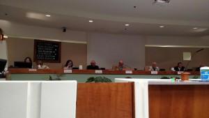 MLN-Councilapr30-15