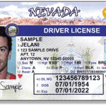 DHS establishes enforcement date for Real ID