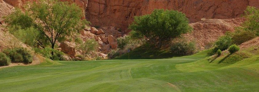 oasis golf