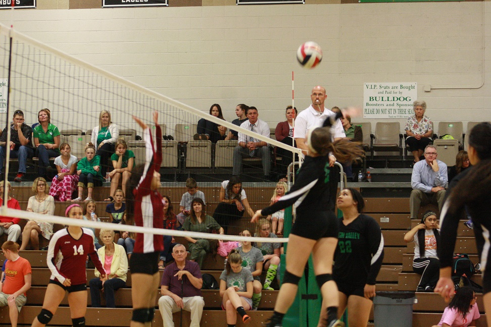 Lady Dawgs roll over Dragons 3-0