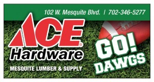AceHardware_11-19 ss-page-001