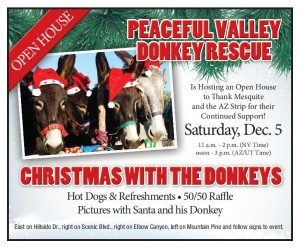 DonkeyRescue_12-3-15-page-001
