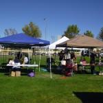 Second Annual Harvest Festival Draws Crowd