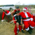 Christmas with the Donkeys is a delight