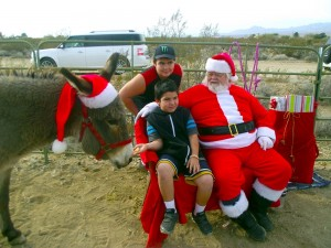 Demitri Martinez and Garrison Greeff feed a treat to Cookie the donkey while letting Santa know what they want for Christmas during the Christmas with the Donkeys event held on Dec. 5 at the Peaceful Valley Donkey Rescue in Scenic, Arizona. Photo by Teri Nehrenz.