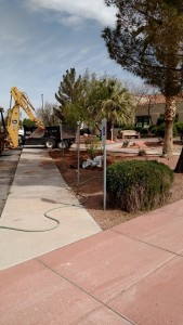 This small area on the west side of City Hall received a facelift Monday as crews removed grass and installed some trees and walkways to help save the city money when it comes to paying the water bills. Photo by Stephanie Frehner.
