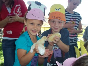 Heidi Andelin, left, and Adler Shaner play with baby chickens during their Kindergarten field trip to the Hafen Ranch. Photo submitted.