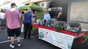 The first Mesquite Farmers Market was held May 27 at Mesquite Plaza on Mesquite Boulevard. Overall, an estimated 400 to 500 people stopped in to support the vendors, many of whom have anxiously said they would be back for future events. Photo by Stephanie Frehner.