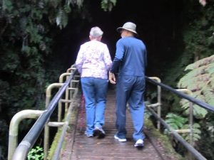 Tourist must walk across bridge to gain entrance to the Thurston Lava Tube.  Photo by Bobbie Green