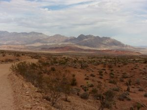 View from Gold Butte Road, Gold Butte region - October 2016