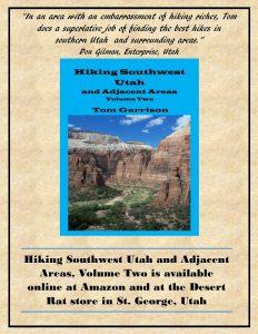 cover-ad-volume-2