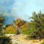 Fire strikes riverbank