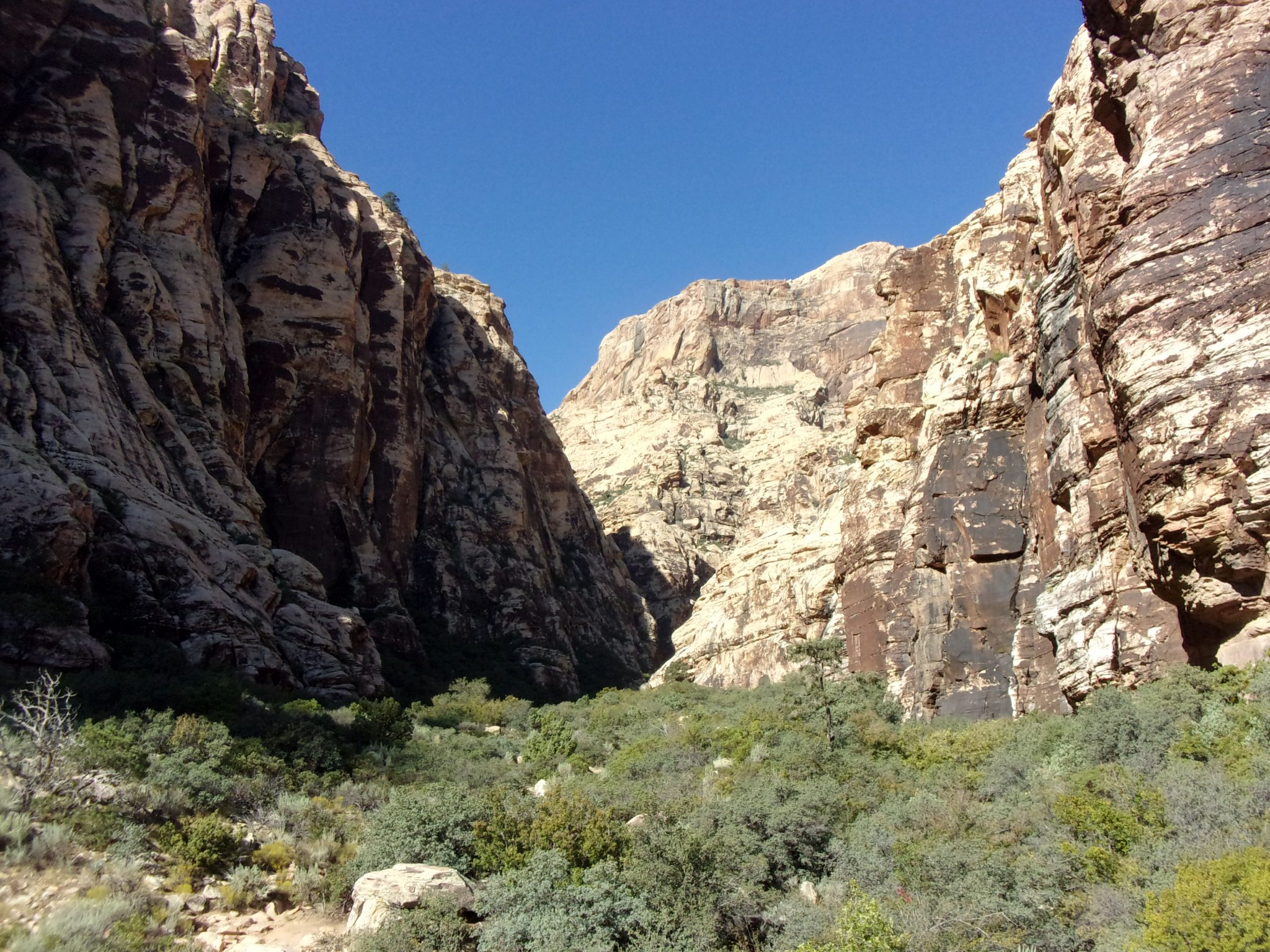 Icebox Canyon Trail: Chillin' Near Las Vegas