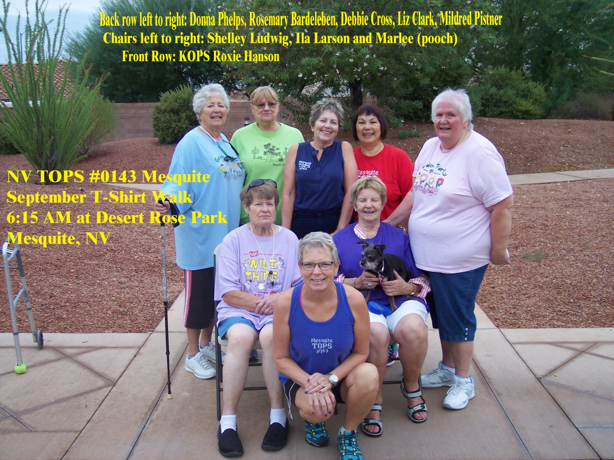 TOPS members take a walk in the park
