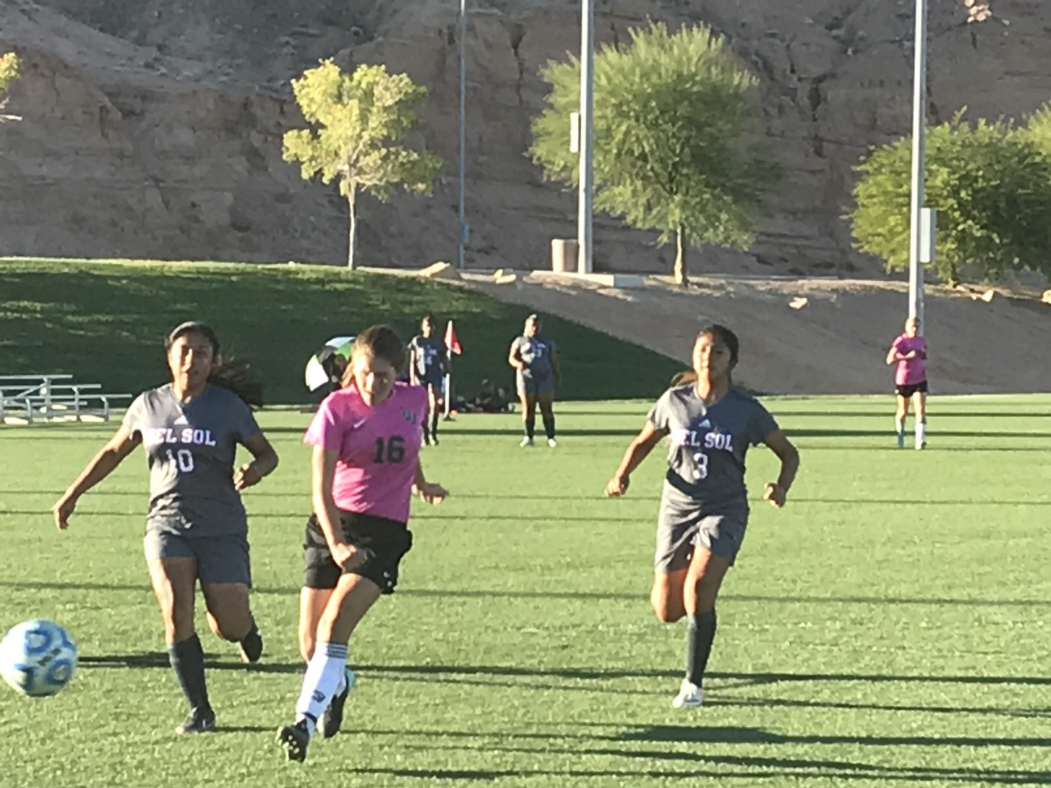 Bulldog soccer gals split games going into playoffs