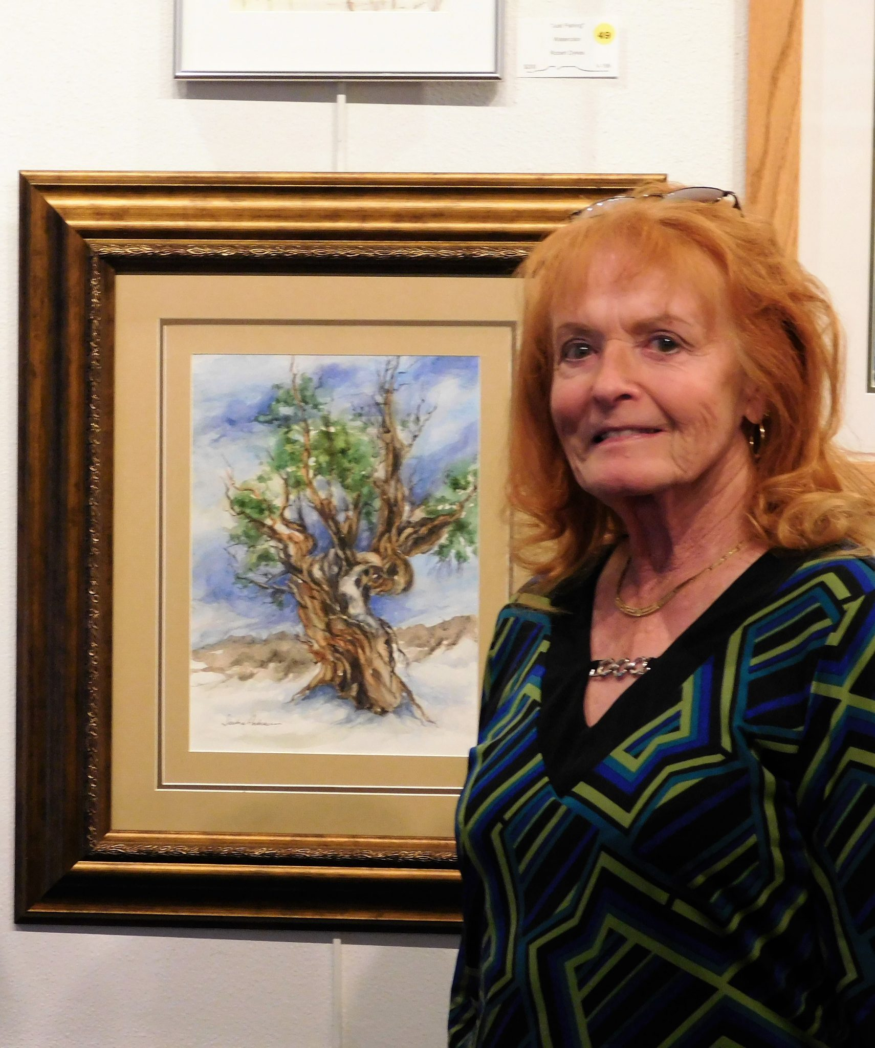 Virgin Valley Artist's Artist of the Month – SANDRA ANDERSON