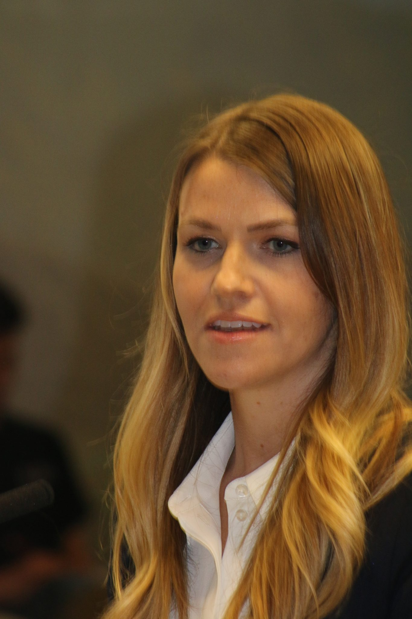 Council hears economic development update