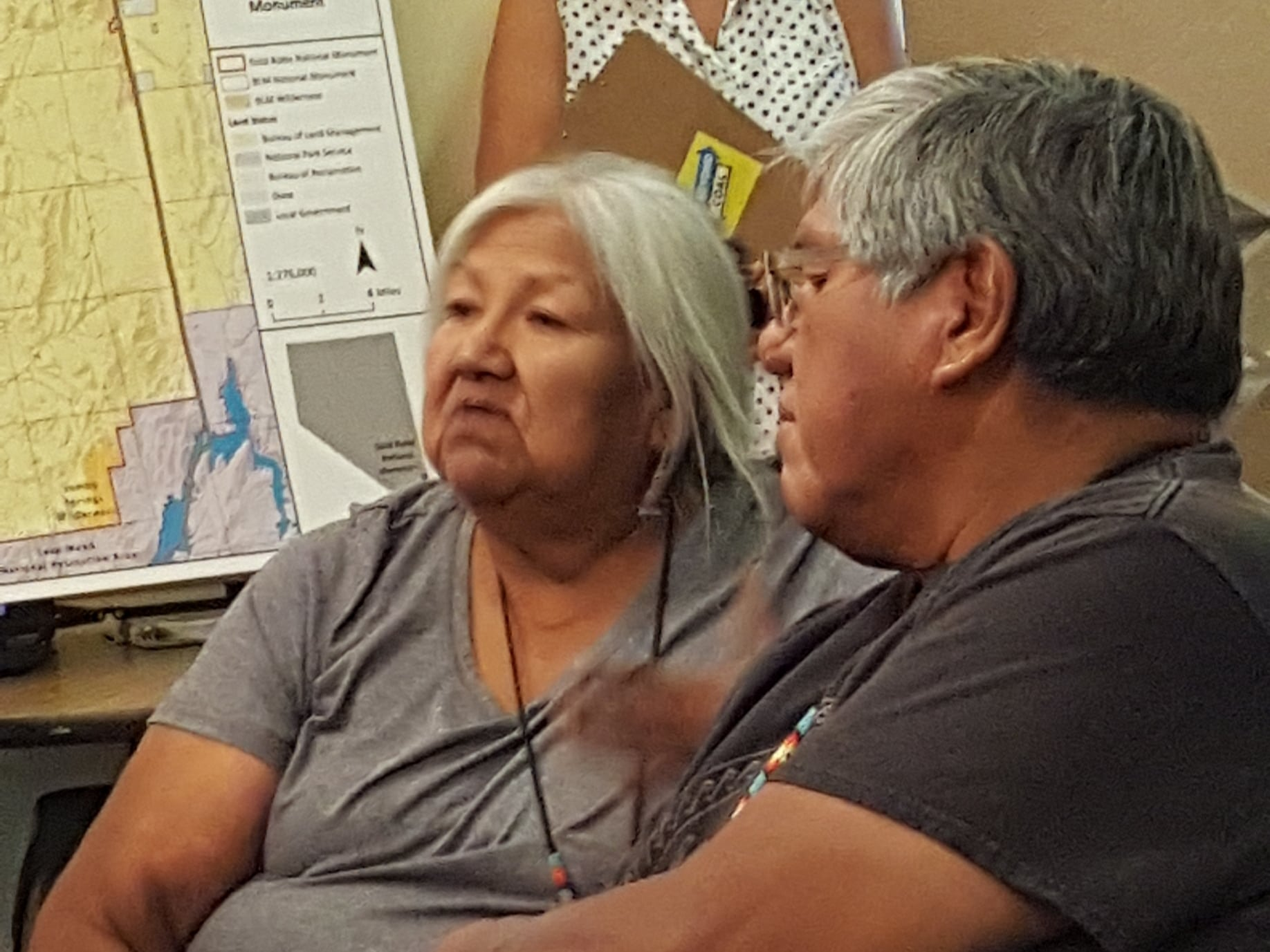 Environmental groups collect comments on Gold Butte management
