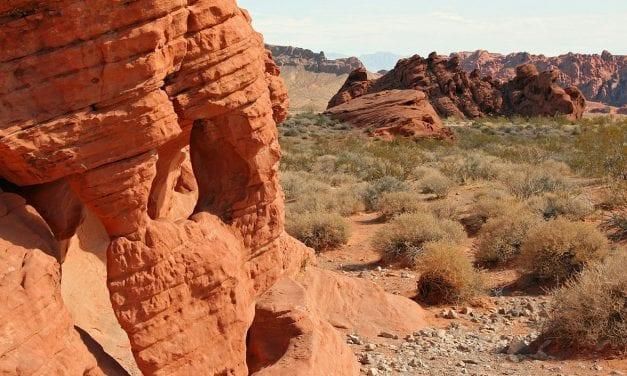 5 Fun things to do in Nevada
