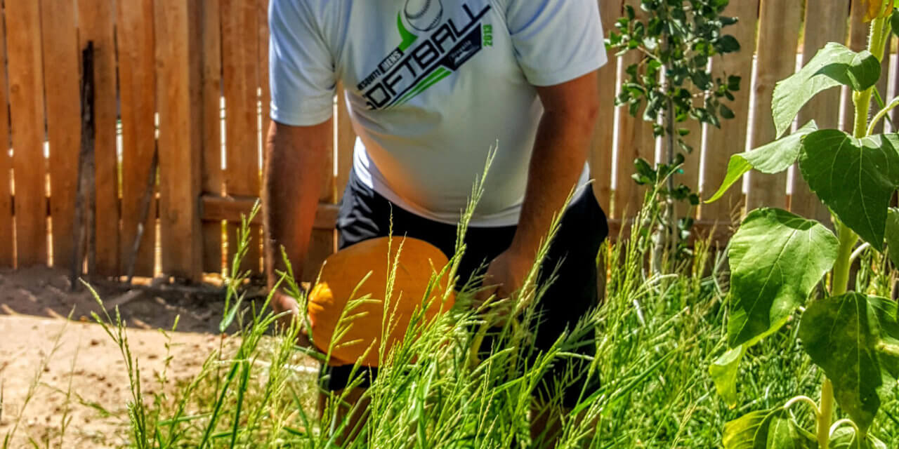 Overcoming the challenges of desert gardening