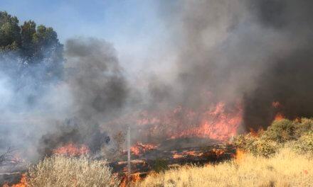 5.6 Acres Burned