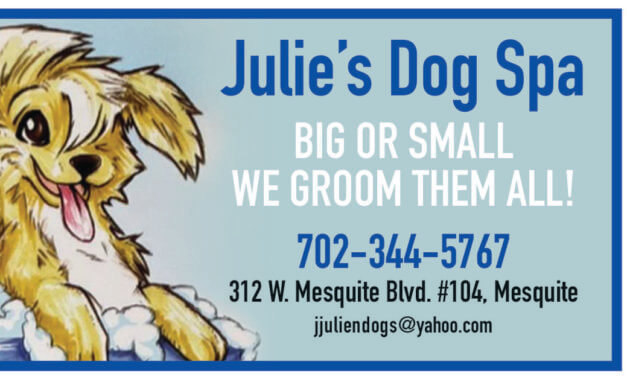 Help wanted: Pet Groomer